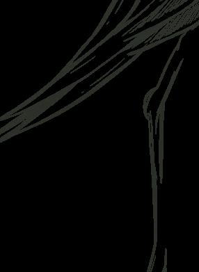 Program Image